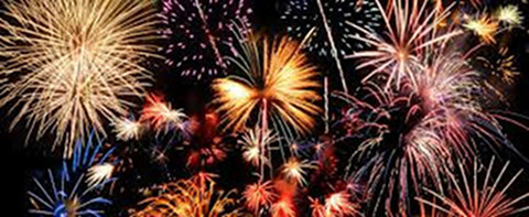 Firework Phobias in Dogs and What We Can Do About It